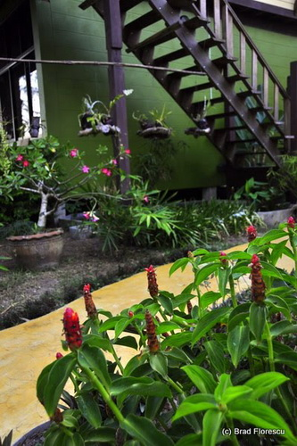 Accommodation Thailand_Lalita Resort 2